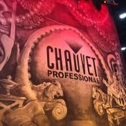 Chauvet2